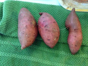 Raw-sweet-potatoes